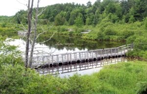An accessible boardwalk allows visitors to enjoy a close-up experience with Cox Ponds in Wetmore in Alger County. Photo courtesy DNR